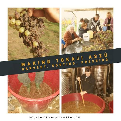 making aszu